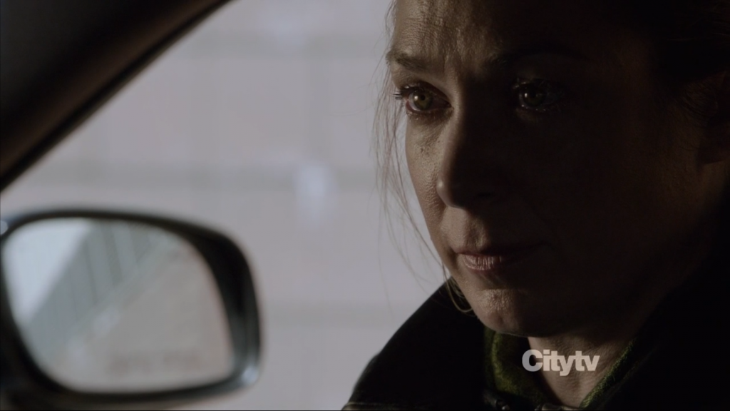 person of Interest - Elizabeth Marvel as Alicia Corwin