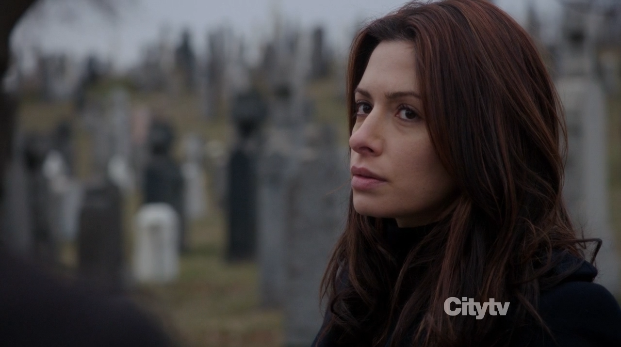 Samantha Shaw (Sarah Shahi) - Person of Interest