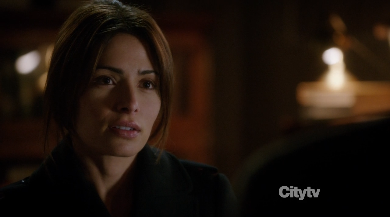 Samantha Shaw (Sarah Shahi) - Person of Interest Trojan Horse
