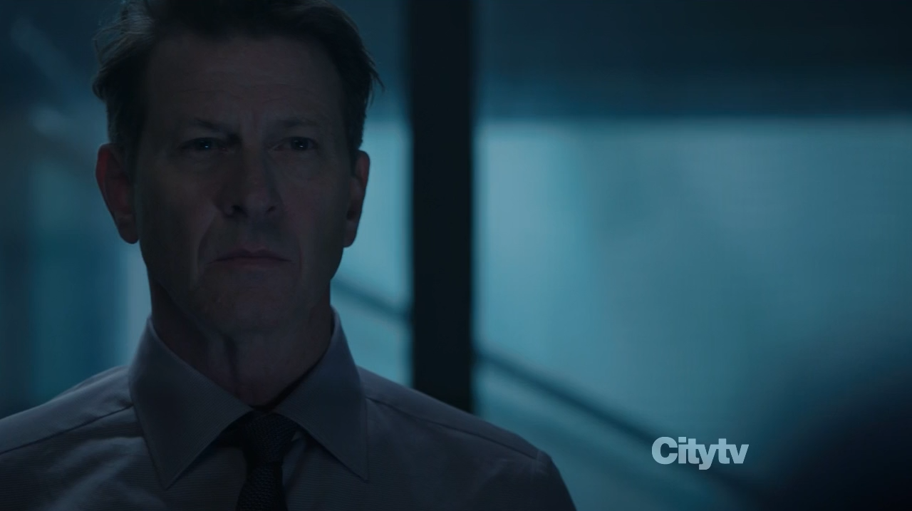 Nathan Ingram (Brett Cullen) - Person of Interest