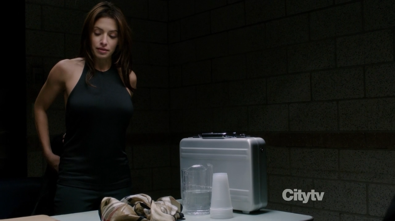 Samantha Shaw (Sarah Shahi) - Person of Interest - Zero Day