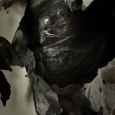 pradeep-singh-mummified-elementary