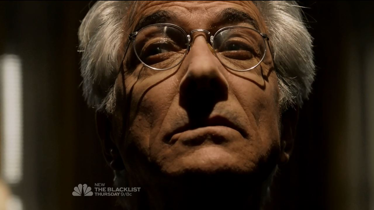 The Blacklist David Strathairn as The Director