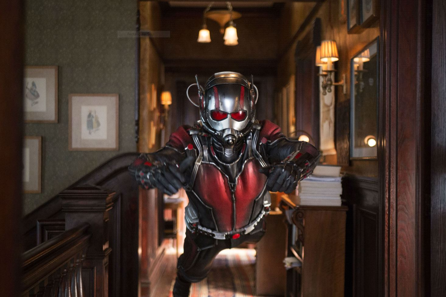 Paul Rudd as Ant-Man. Ant-Man Review