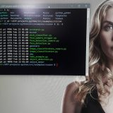 Vision Kit list of demos - Elizabeth Mitchell hot