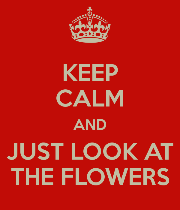 The Walking Dead - Keep Calm And Just Look At The Flowers