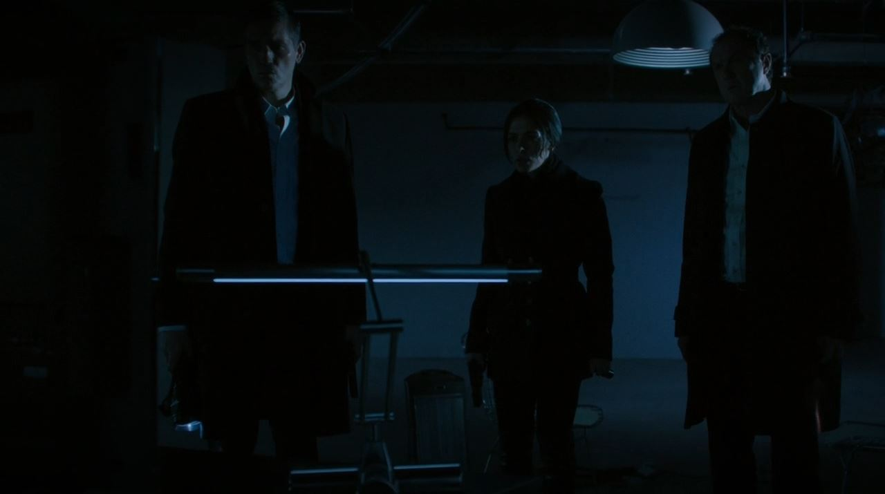 Person of Interest A house Divided - Reese, Shaw and Hersh trying to find Finch