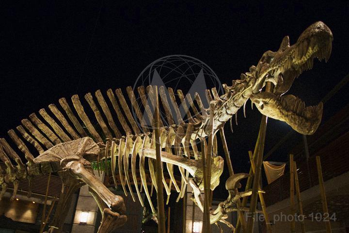 Jurassic World dino bones Jurassic World opens website with countdown clock and photos