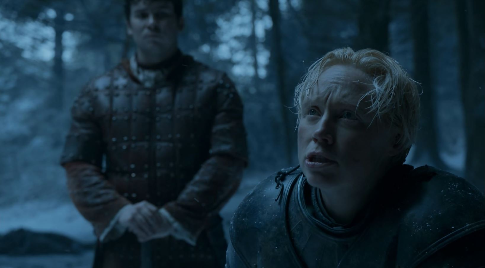 Brienne pledges to Sansa. Game Of Thrones S6Ep1 The Red Woman Review