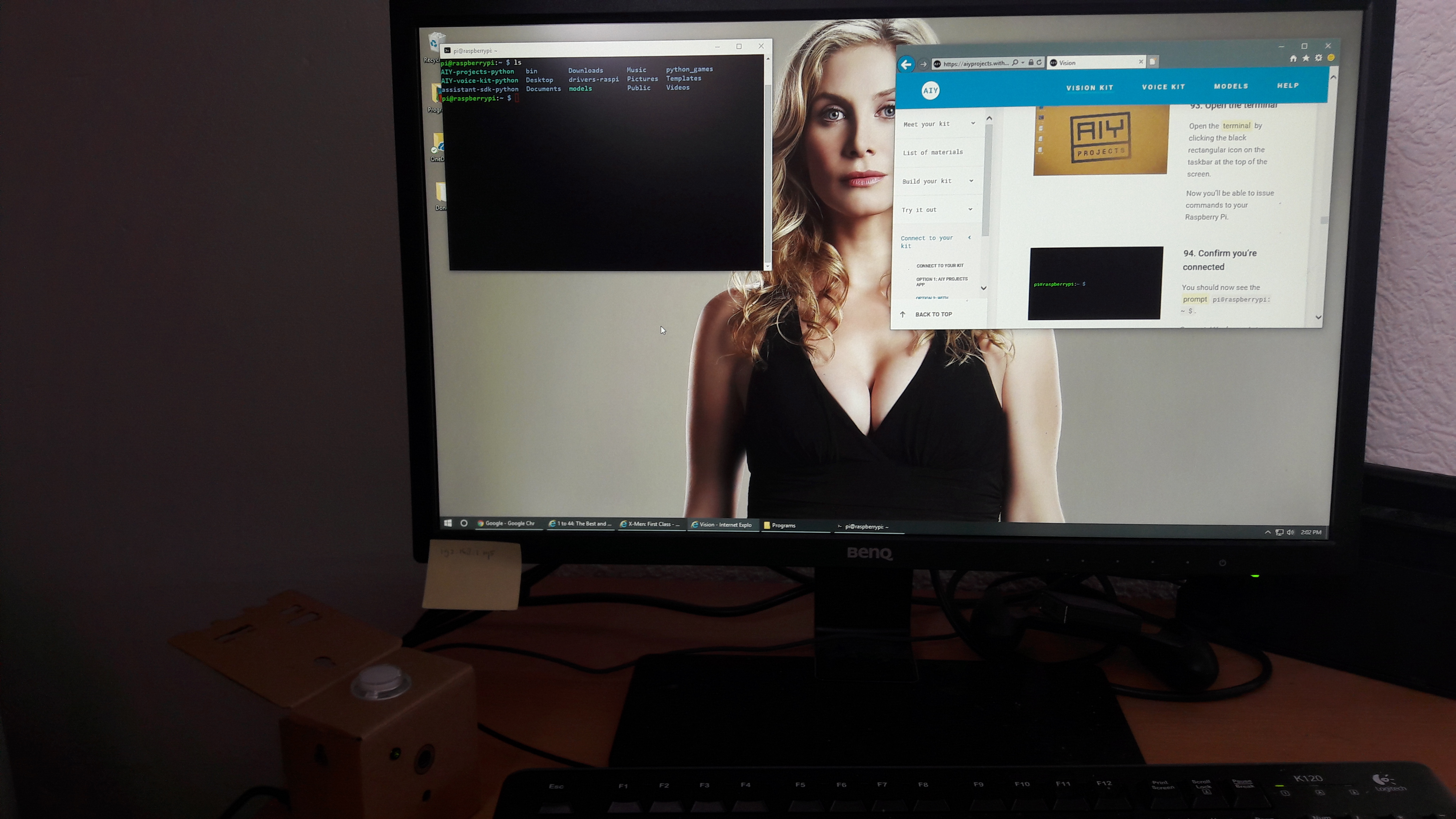 Connecting to the Vision Kit - Elizabeth Mitchell cleavage