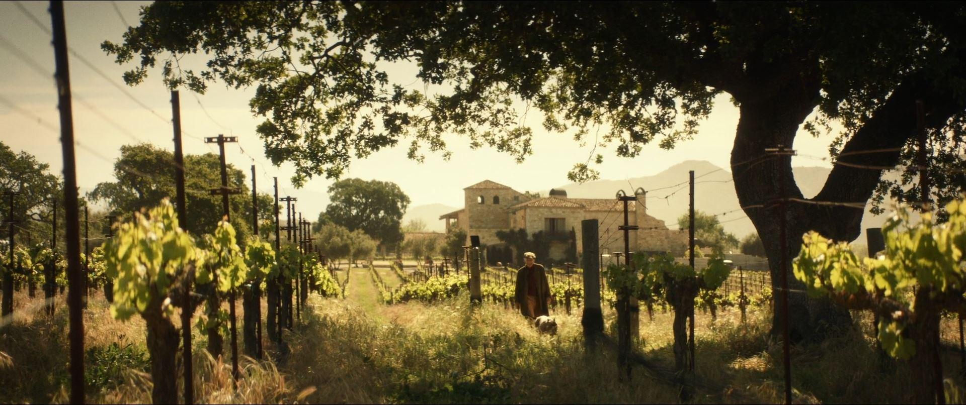 Star Trek Picard - Jean-Luc Picard on his vineyard