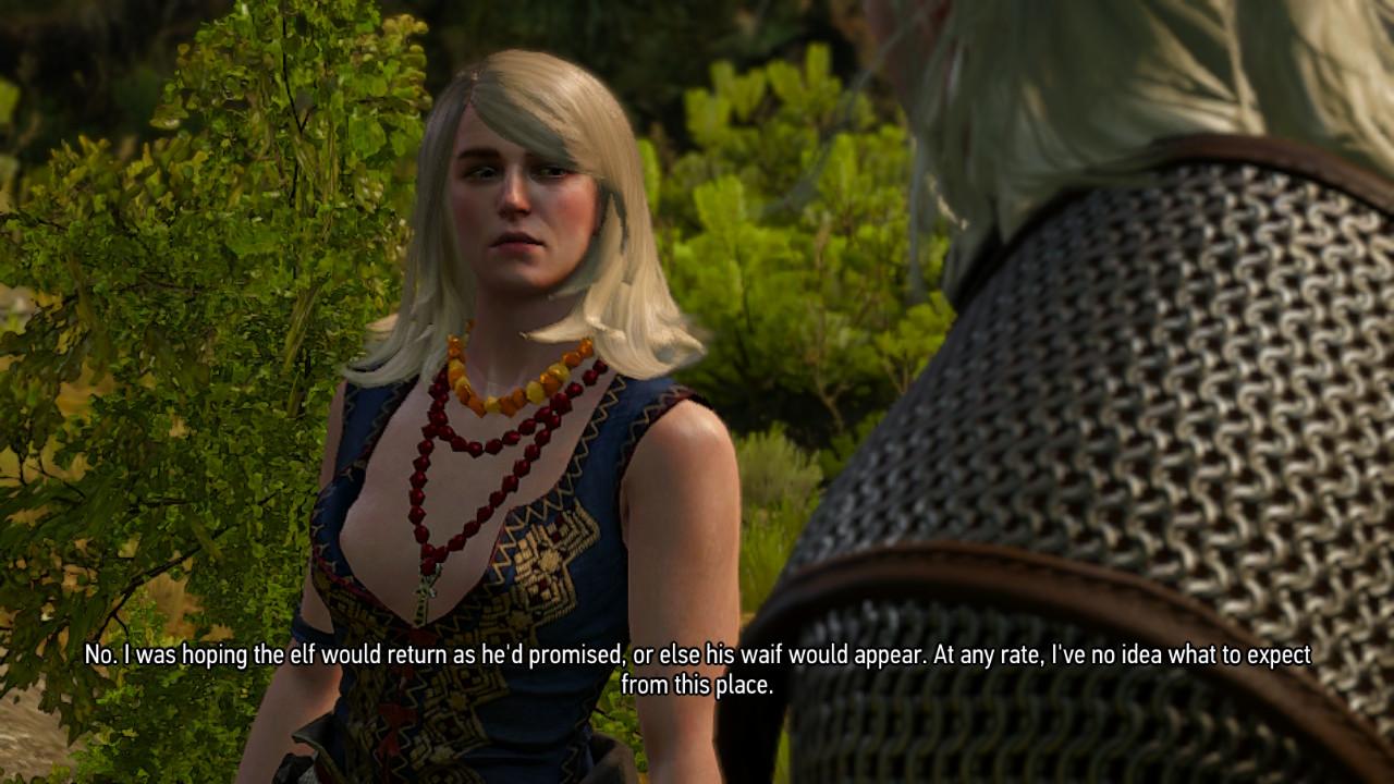 The Witcher 3 on Nintendo Switch Keira Metz